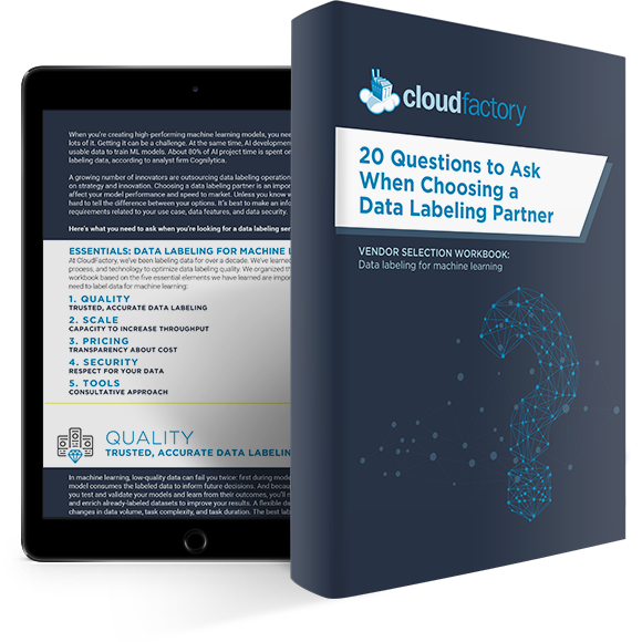 3d-book-rendered-20-questions-choosing-a-data-labeling-partner-ipad