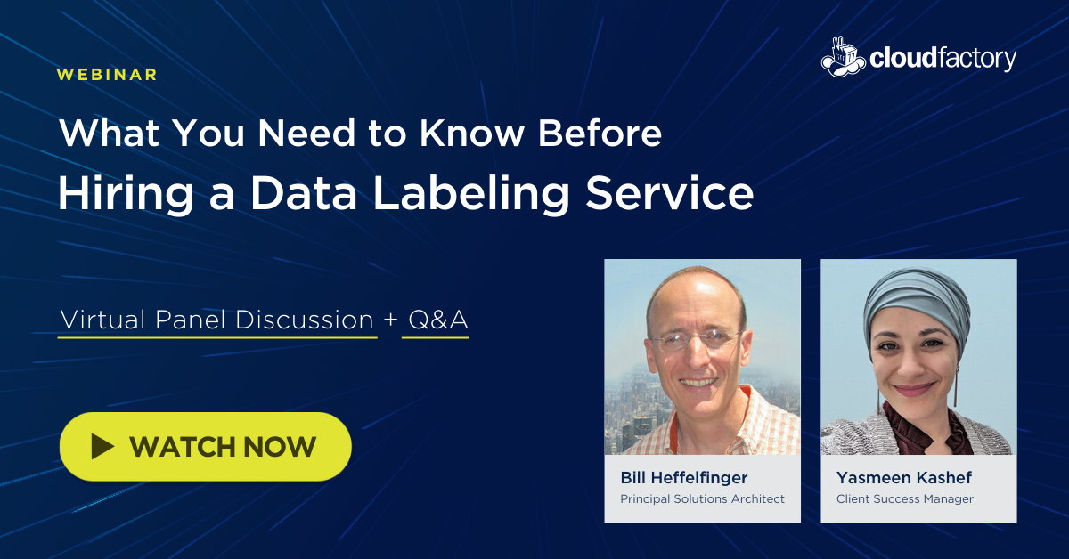 Choosing the Right Data Labeling Partner