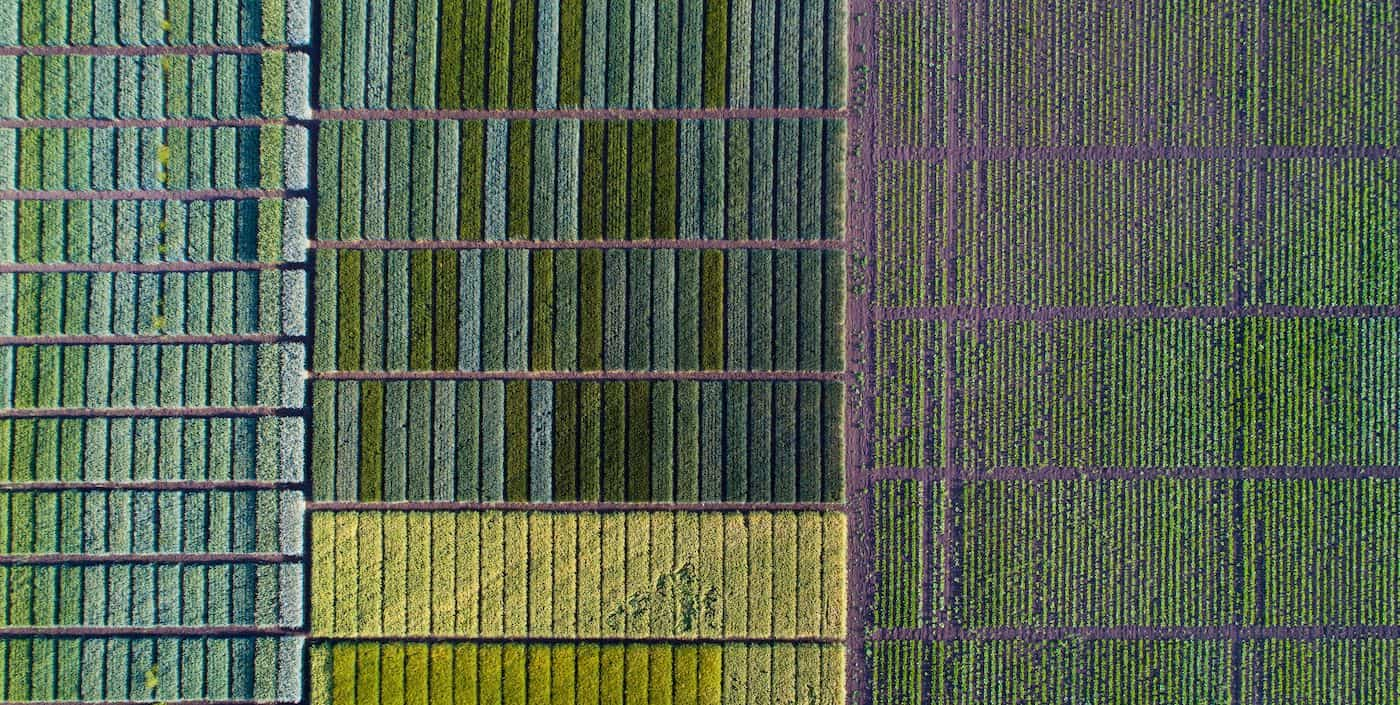 An AgTech company uses imagery from drones and satellites to provide farmers with crop analytics to help them increase their yields. This image shows an aerial view of farmland segmented by crop type.