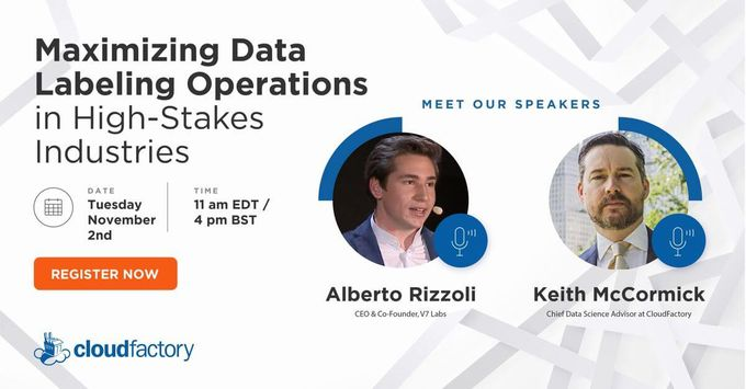 Maximizing Data Labeling Operations in High-Stakes Industries