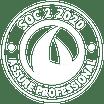 SOC 2 2020 Assure Professional