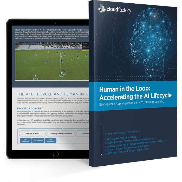Human in the Loop: Accelerating the AI Lifecycle