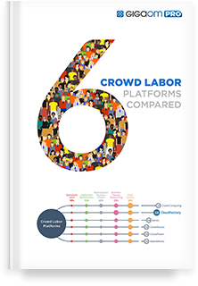 Crowd Labor Platform Report