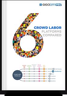 Crowd Labor Platform Report